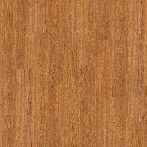 Arlington 20 6 x 48 x 3mm Luxury Vinyl Plank in Fairfax by Shaw Floors