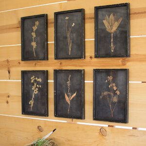 Framed Sprig Prints (Set of 6) by Birch Lane™