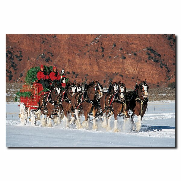 Clydesdales in Snow with Carriage & Xmas Tree Phot