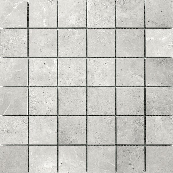 Realm 2 x 2 Ceramic Mosaic Tile in Domain by Emser Tile