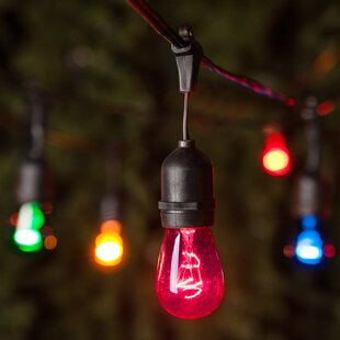 24 Light Globe String Lights