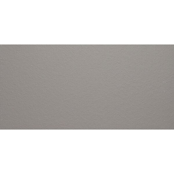 Aledo 12 x 24 Porcelain Field Tile in Trend Grey by Itona Tile