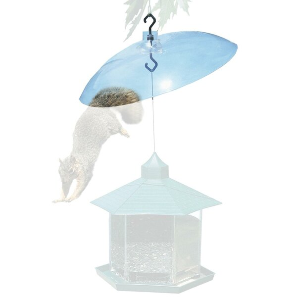 Squirrel Baffle in Clear by Woodstream Wildbird