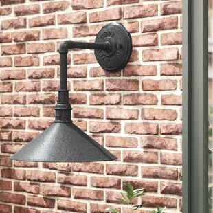 Great Price Shalena 1-Light Outdoor Barn Light By 17 Stories