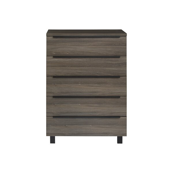 Rigoberto 5 Drawer Chest by Union Rustic