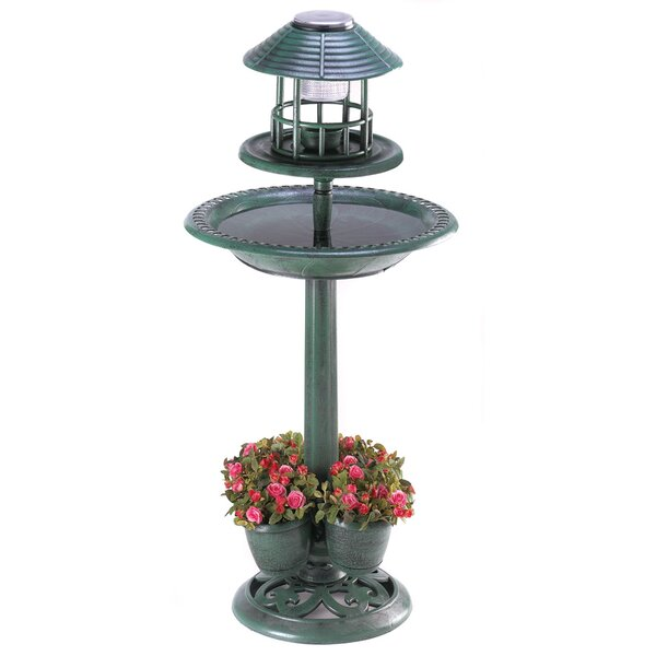 Lighted Birdbath Plant Stand by Zingz & Thingz