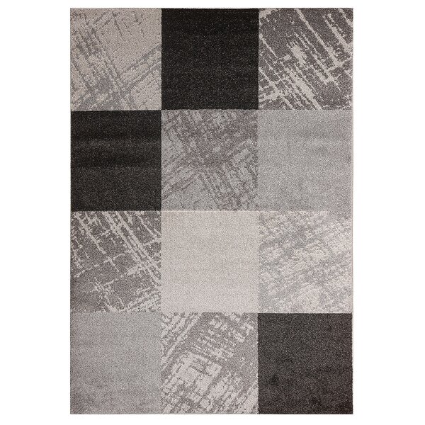 Filion Ruthwell Boxes Design Gray/Black Rug