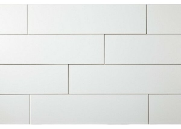 Value Series 4 x 16 Ceramic Subway Tile in Bright Glossy White (Set of 5) by WS Tiles