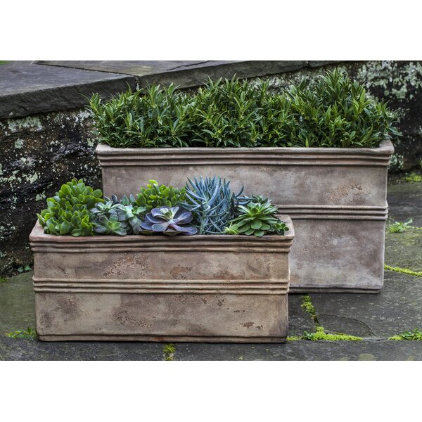 Amico 2 Pieces Rectangular Terra Cotta Planter Box Set by Bloomsbury Market
