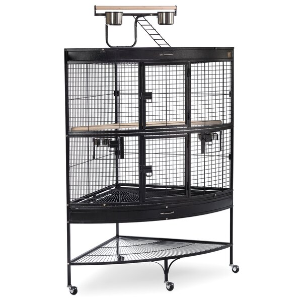Large Bird Cage with Storage Shelf by Prevue Hendr