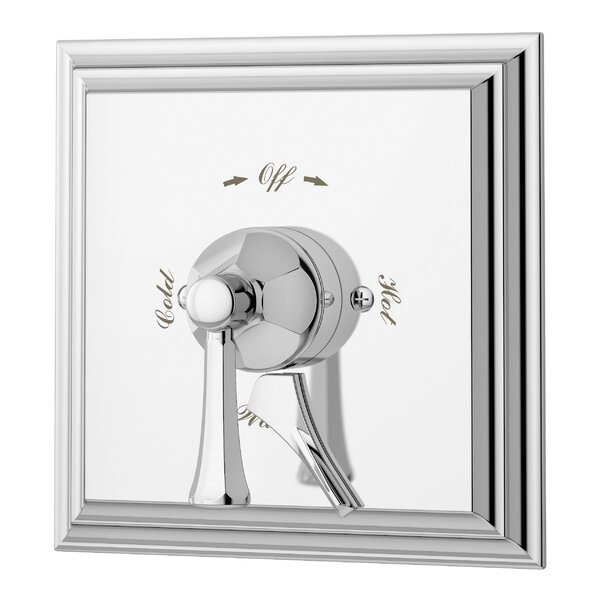 Canterbury Single Handle Shower Valve Trim only with Metal Lever Handle by Symmons