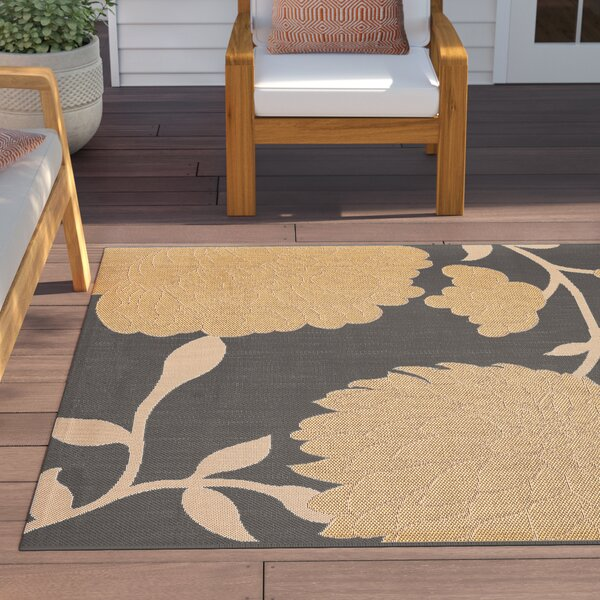 Larson Anthracite/Beige Indoor/Outdoor Area Rug by Sol 72 Outdoor