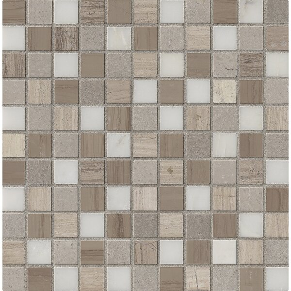 Arctic Storm 1 x 1 Marble Mosaic Tile in Gray by MSI