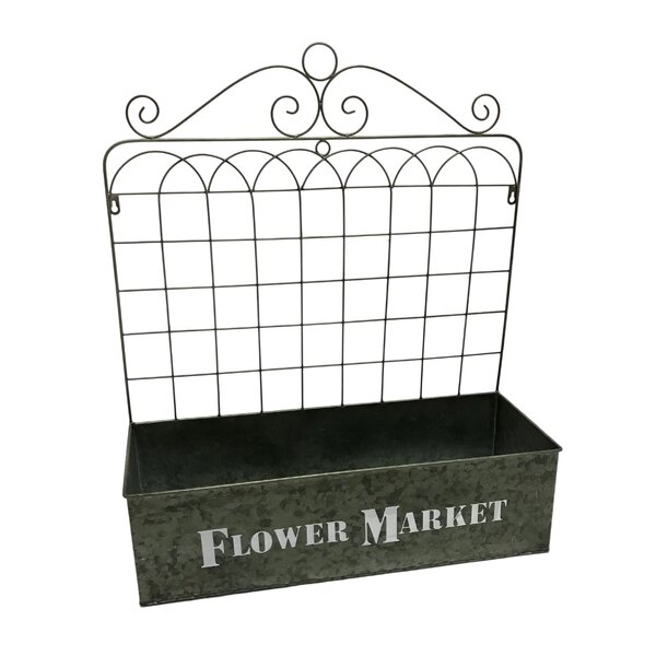 Masie Flower Market Gate Metal Wall Planter by Gracie Oaks