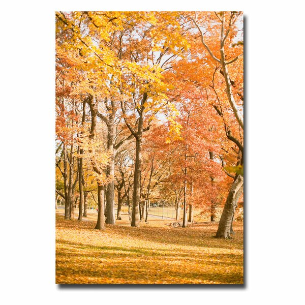 Central Park Trees by Ariane Moshayedi Photographic Print on Wrapped Canvas by Trademark Fine Art