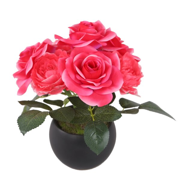 Roses Floral Arrangement in Pot by House of Hampton