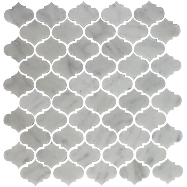 Carrara Mini Teardrop Random Sized Marble Mosaic Tile in White by Susan Jablon