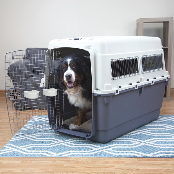 XXXL Premium Plastic Dog Pet Crate/Carrier by Kennels Direct