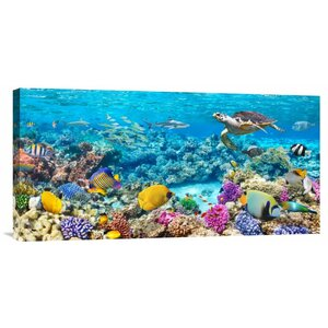 'Sea Turtle and Fish, Maldivian Coral Reef' Photographic Print on Wrapped Canvas by Global Gallery