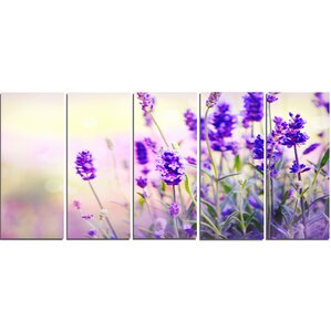 Lavender Wall Art framed lavender wall art | wayfair