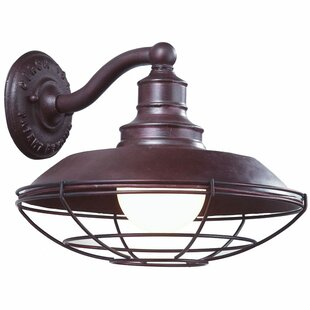 Theodore 1-Light Outdoor Barn Light by Darby Home Co
