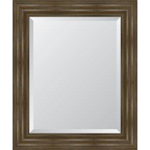 Melissa Van Hise English Resin Frame Wall Mirror