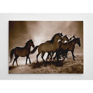 Wild Horses by Lisa Dearing Photographic Print on Wrapped Canvas by Wexford Home