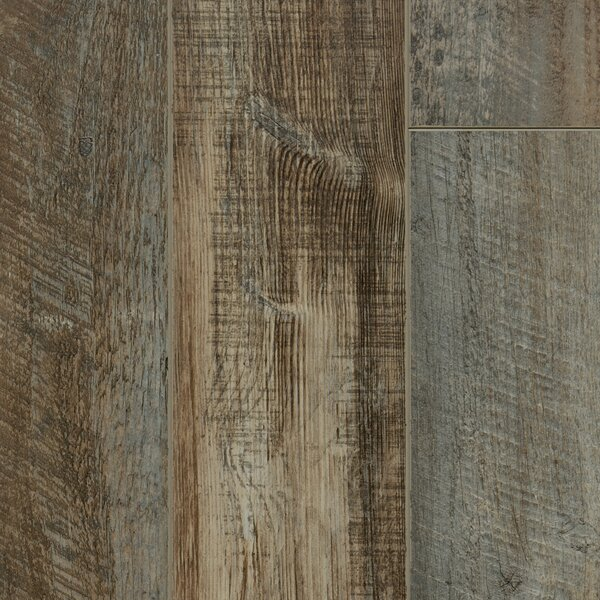 Signature 6 x 48 x 12mm Oak Laminate Flooring in Castle by Dyno Exchange