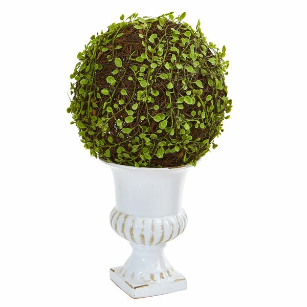 Muhlenbergia Ball Floor Moss Topiary in Urn by Darby Home Co