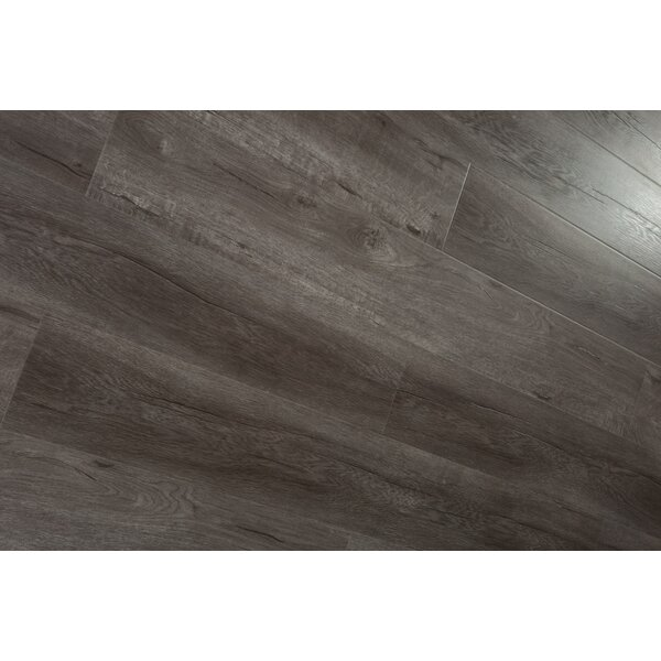 Forest Park 7 x 49 x 12mm Laminate Flooring in Brown (Set of 4) by Christina & Son