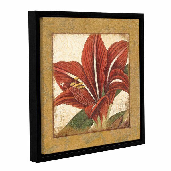 Amaryllis Bloom Framed Graphic Art on Wrapped Canvas by Bay Isle Home