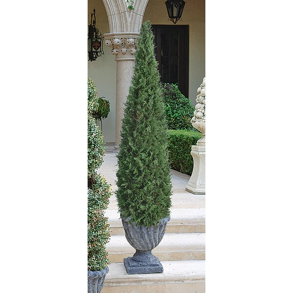 The Cone Topiary in Urn by Design Toscano