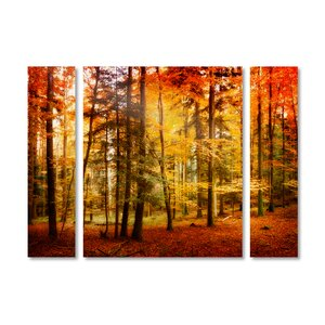 'Brilliant Fall Color' by Philippe Sainte-Laudy 3 Piece Photographic Print on Wrapped Canvas Set by Trademark Fine Art