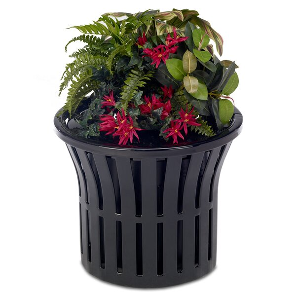 Rendezvous Plastic Pot Planter by Anova