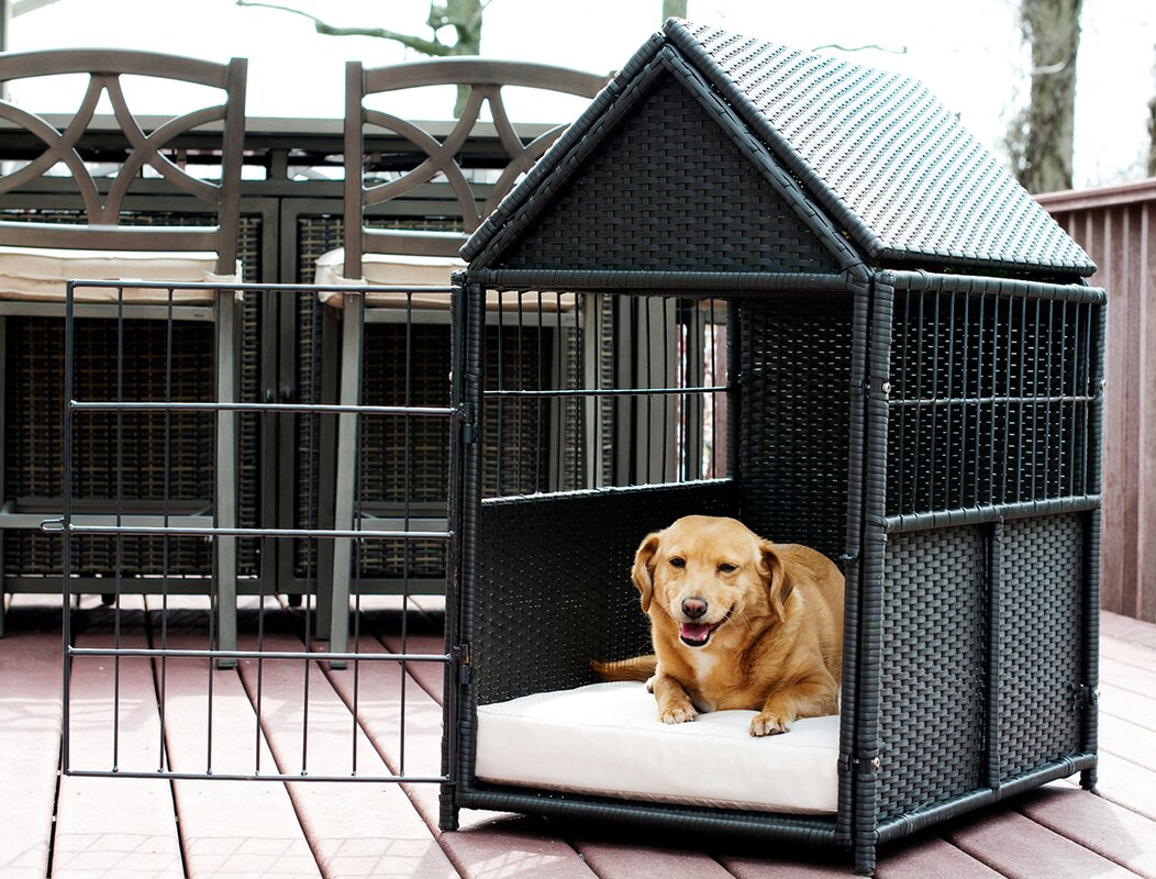 Iconic Pet Crate