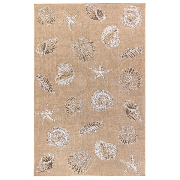 Desantiago Shells Sand Indoor/Outdoor Area Rug By Highland Dunes