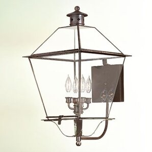 Theodore 4-Light Outdoor Sconce By Darby Home Co Outdoor Lighting