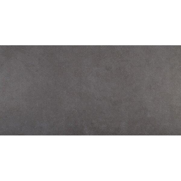 Haut Monde 24 x 48 Porcelain Field Tile in Empire Black by Daltile