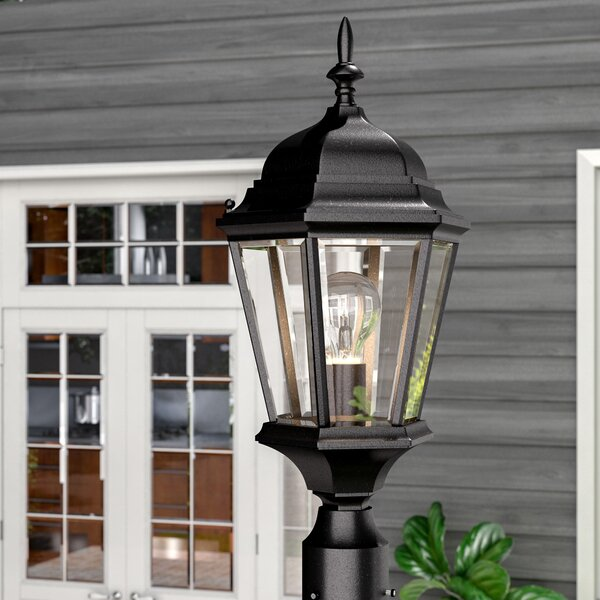 Barnier Outdoor 1-Light Lantern Head by Astoria Grand