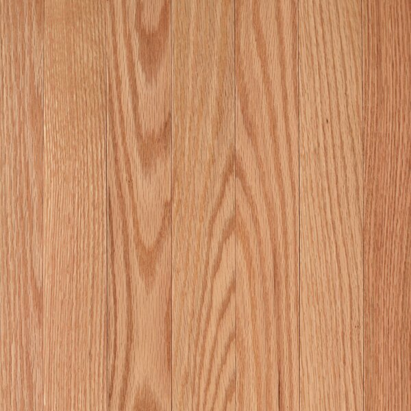Barletta 2-1/4 Solid Oak Hardwood Flooring in Red Natural by Mohawk Flooring