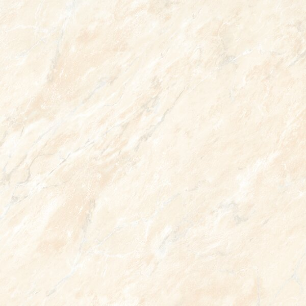 Glazed 24 x 24 Porcelain Field Tile in Beige by Multile