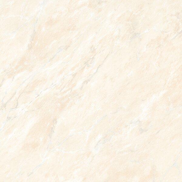 Glazed 24 x 24 Porcelain Field Tile in Beige by Multile