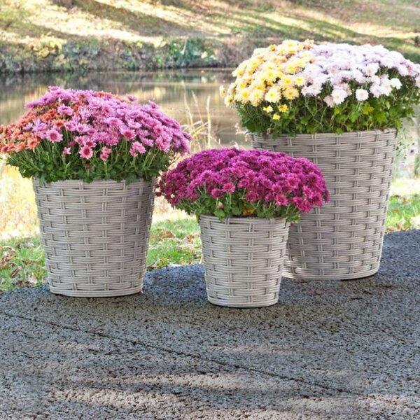Vimini 3-Piece Vinyl Pot Planter Set by Pride Garden Products
