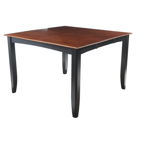 Palm Springs Counter Height Solid Wood Dining Table by Loon Peak