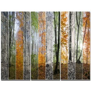 'Wood Panorama Changing Seasons' Photographic Print Multi-Piece Image on Canvas by Design Art