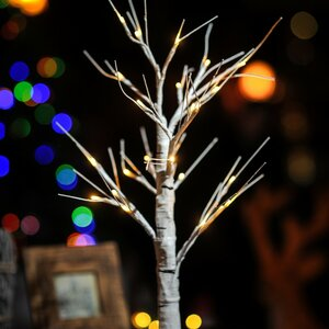 LED White Birch Light