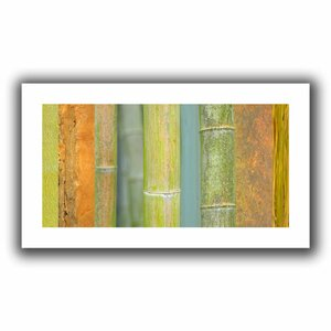 Bamboo Green Orange' by Cora Niele Graphic Art on Rolled Canvas by ArtWall
