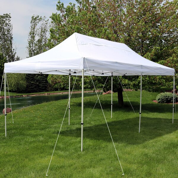 Alverta 10 Ft. W x 20 Ft. D Steel Pop-Up Party Tent by Freeport Park