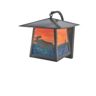 Price Check 1-Light Outdoor Wall Lantern By Meyda Tiffany