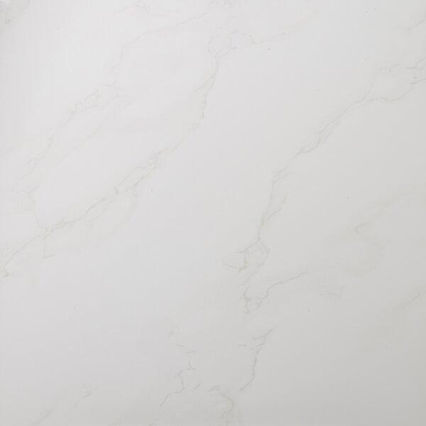 Paladino 24 x 24 Porcelain Field Tile in Albanella Matte by Emser Tile